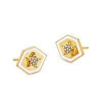 20K Star Stud Earrings